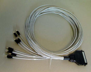 [Photo of Hydra cable - Telco to RJ45]